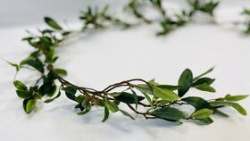 """Image of a 58"""" Ruscus Garland"""