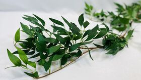 Image of a 6' Smilax Garland