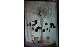 Image of a Collage Tree Centerpiece