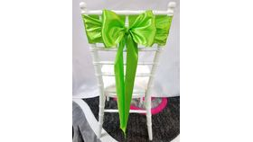 Image of a Apple Green Satin  Sashes