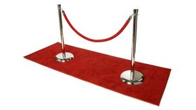 "30"" Silver / Chrome Stanchion image"