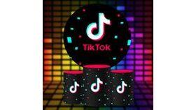 Image of a TikTok Theme Round Backdrop