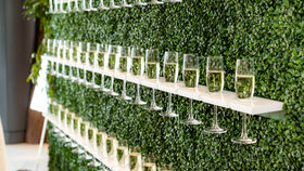 Image of a Champagne Wall