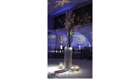 "Image of a White 17"" LED Branch/Tree (Battery Powered)"