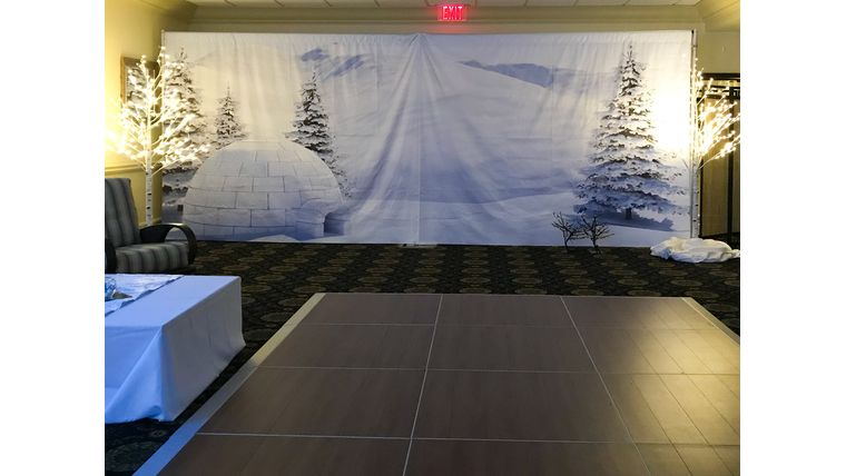 Picture of a Igloo Backdrop Scene