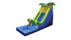 Image of a Palm Tree Water Slide