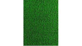 Image of a Astroturf