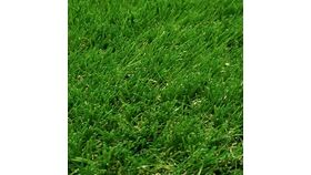 """Image of a Artificial Turf 52 - Green - 15' Wide x 2"""" Pile Height (Per Sq Ft)"""