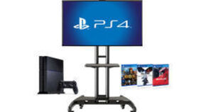 Image of a PS 4 Arcade Station