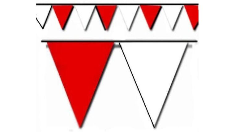 Picture of a 100' Red and White Triangle Pennant Flag Rental