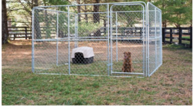 Image of a 10' x 10' Silver Chain Link Dog Kennel w/Access Door