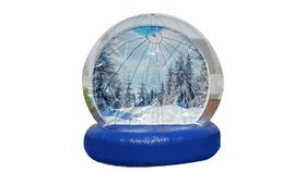 Image of a Snow Globe