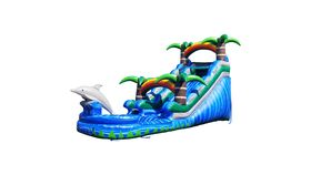 Image of a Coming Soon! Dolphin Splash Water Slide