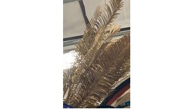 Image of a Gold Palms