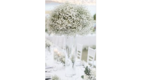 Image of a Babys Breath Elevated Arrangement