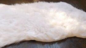 Image of a Mini White Fur Rug