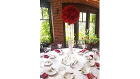 Image of a Mr.Brian's Red Roses