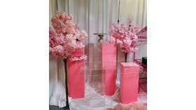 Image of a 3pc Pink Spandex Pedestals set