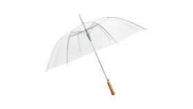 Image of a Clear Umbrella