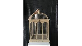 Image of a Birdcage Card Box - Large Wood