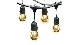 Image of a 40' Edison LED String Lights - Black Cord