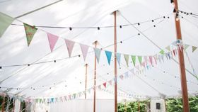 Image of a Vibrant Bunting Garland