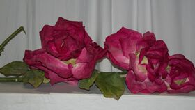 Image of a Extra Large Red / Pink Paper Roses on Vines 3' - 5'