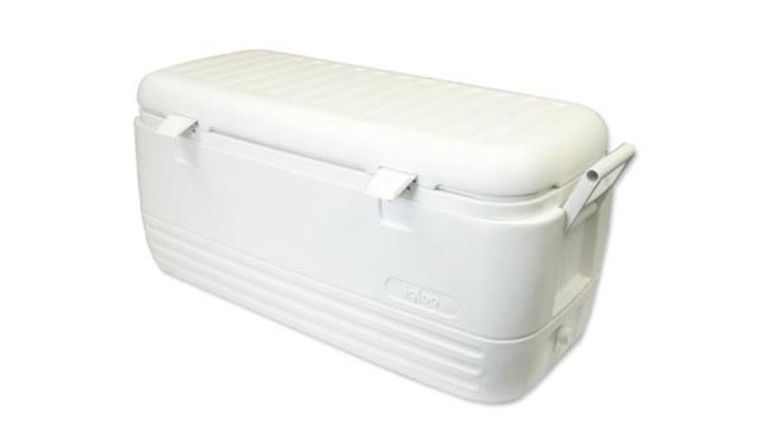 Picture of a 125 qt Cooler