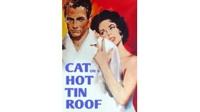 Image of a Cat on a Hot Tin Roof Movie Poster
