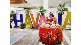 Image of a HAVANA 8ft Letters