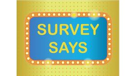 Image of a Survey Says