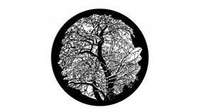 Image of a ADJ Hi-Res Winter Tree Gobo