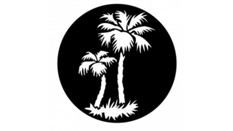 Picture of a 2 Palm Trees Gobo