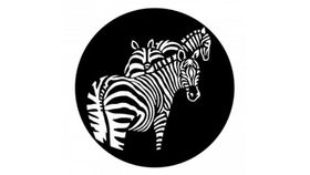 Image of a African Zebras Gobo