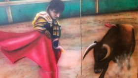 Image of a Bullfighter Flat