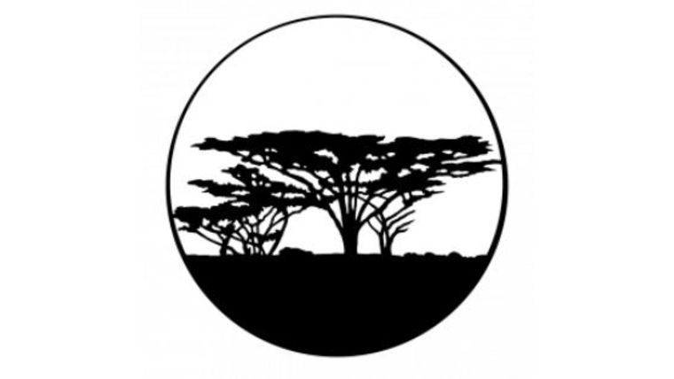 Picture of a ADJ Trees-Africa Gobo