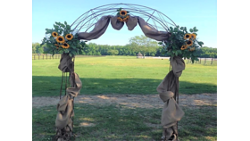 Image of a Iron Arch Arbor