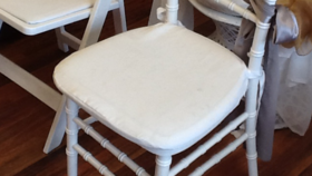 Image of a Polyester Chair Cushion  - White