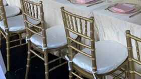 Image of a Satin Chair Cushion Covers -Ivory