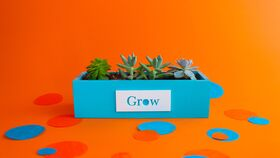 Image of a DIY Intentional Word Planter