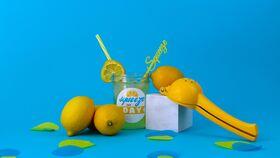 Image of a Fresh Squeeze Lemonade Break