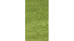 Image of a Area Rug - Green Shag