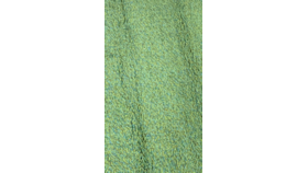 Image of a Area Rug - Parrot Green Shag