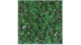 Image of a Astroturf Green