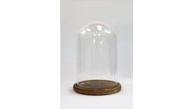 Image of a Glass Cloche with Wooden Base