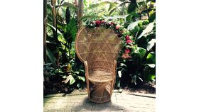 Image of a Peacock Wicker Chair (MD)