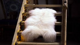 "Image of a Real Sheepskin 48"" (cream)"