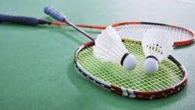 Image of a Badminton