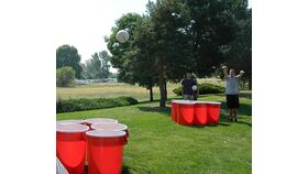 Image of a Giant Party Pong