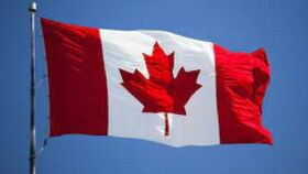 Image of a Flag Canada Small